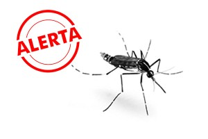 Febre-do-chikungunya-pode-se-espalhar-pelo-continente